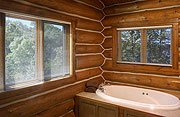 The Cottage on Lake Galena Master Suite Bathroom